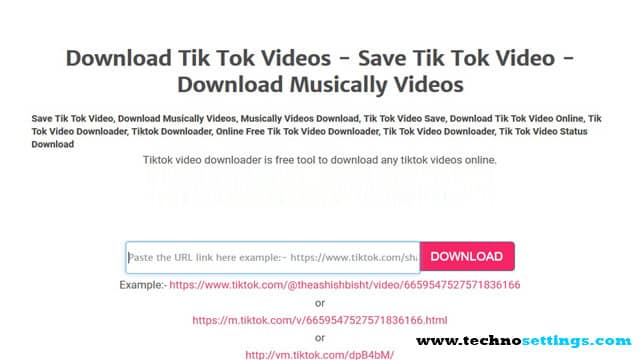 tiktok video downloading website